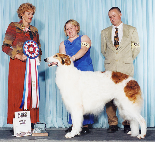 Borzoi Canada 2003 National Best of Breed